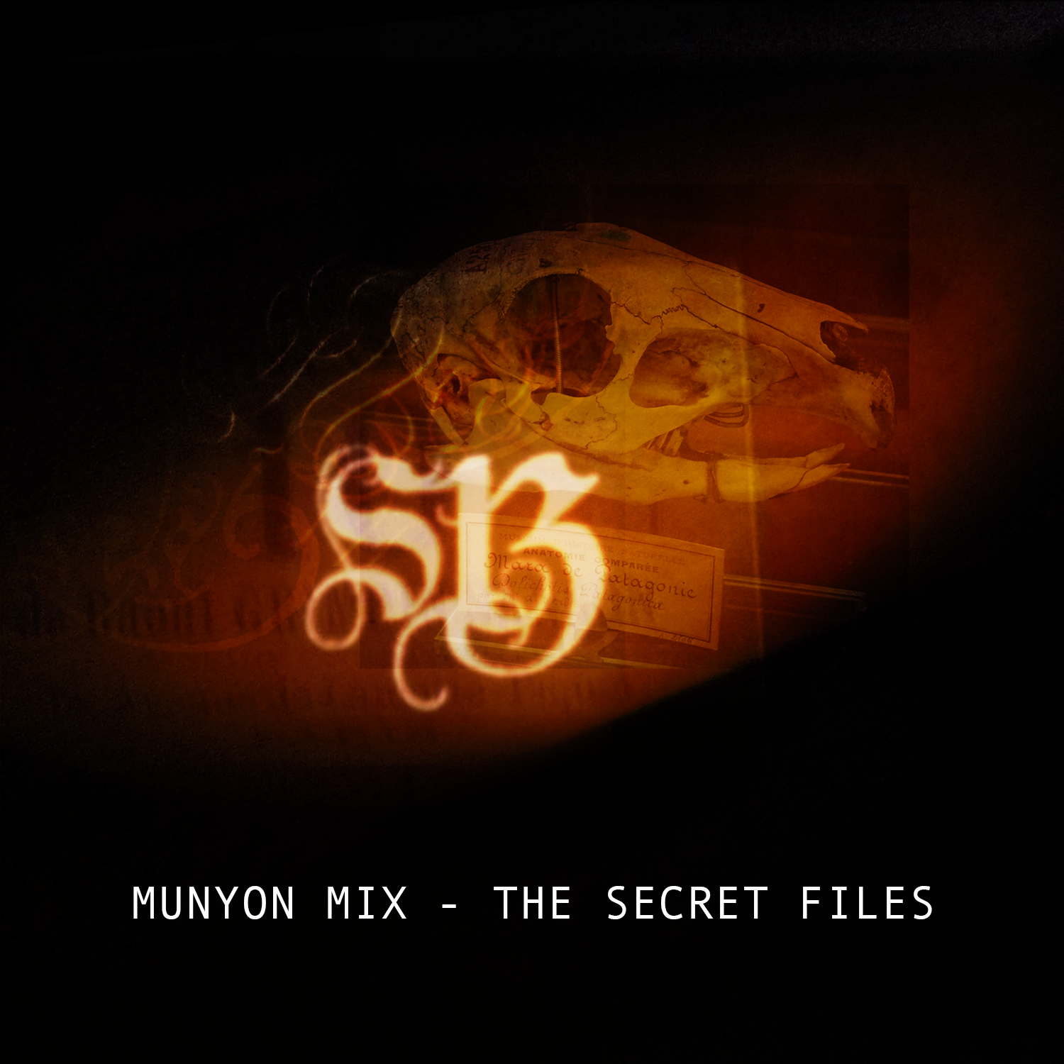 The Munyon Mixes