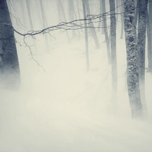 tress-snow2