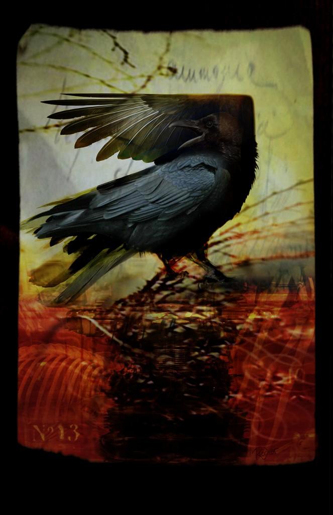 corbeau2-print